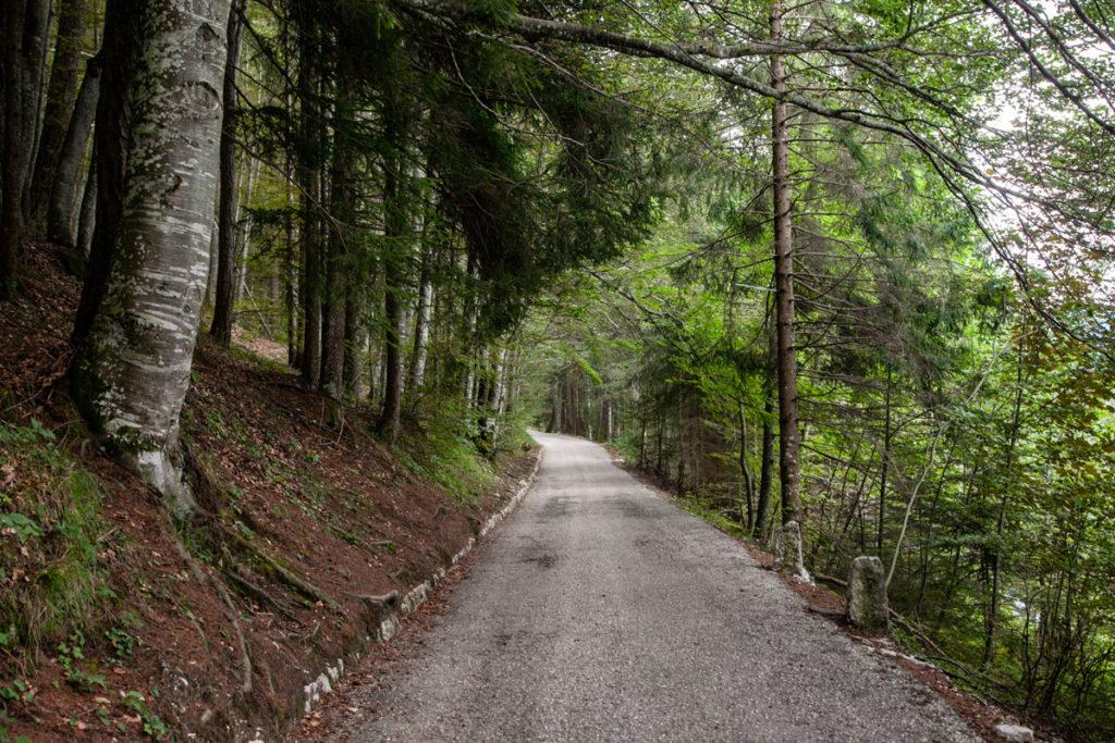 Strada dal parcheggio al forte - Comune di Lavarone