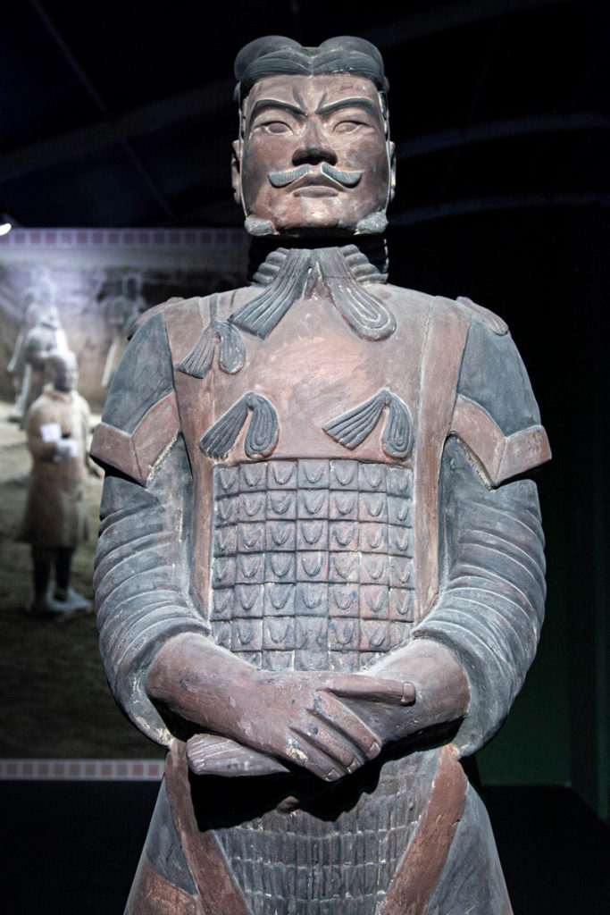 Ufficiale di Alto Rango - Guerrieri di Terracotta a Milano