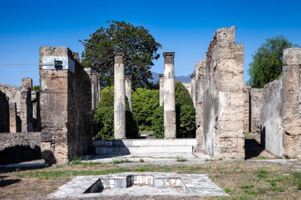 Cortile e colonne della Casa di Pansa