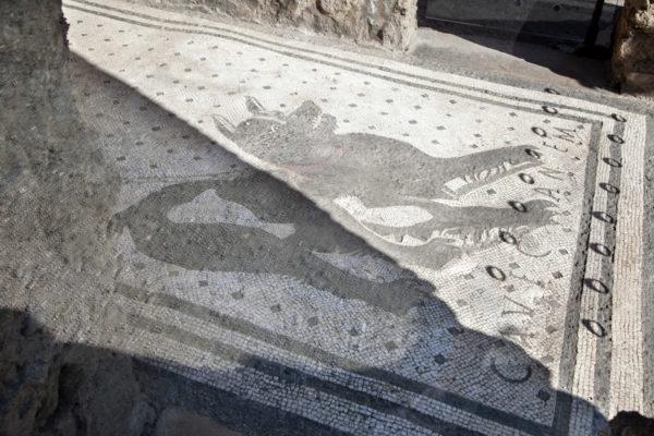 Mosaico pavimentale della Casa del Poeta Tragico a Pompei - Cane