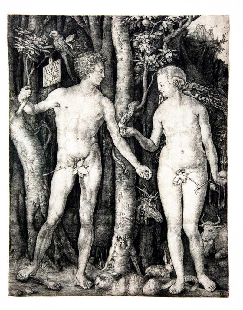 Rinascimento nordico - proporzioni ideali e stile classico in Adamo ed Eva - il peccato originale del 1504 - Albrecht Dürer