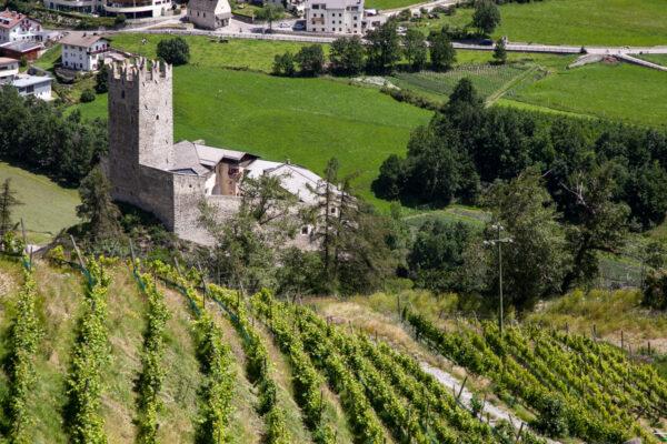 Castello del Principe di Burgusio visto dai vigneti della Abbazia di Monte Maria
