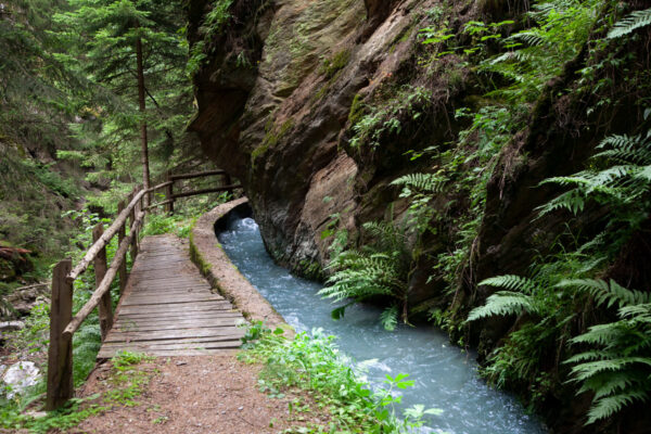 Sentiero delle Rogge in Val Venosta