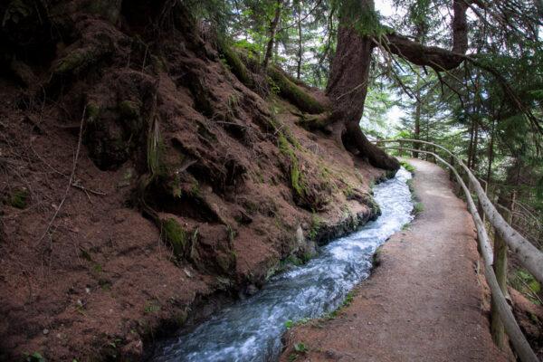 Trekking lungo il sentiero sopra a Sluderno