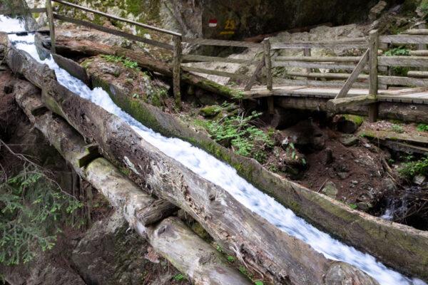 Tronchi di larice che trasportano acqua nel sentiero delle rogge
