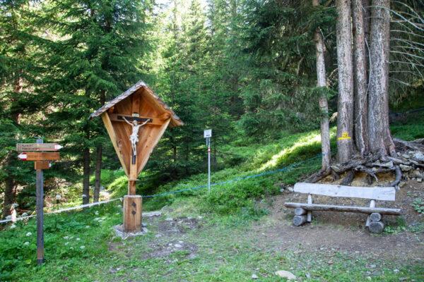 Confine con Austria dentro al bosco sul trekking di Pian dei Morti