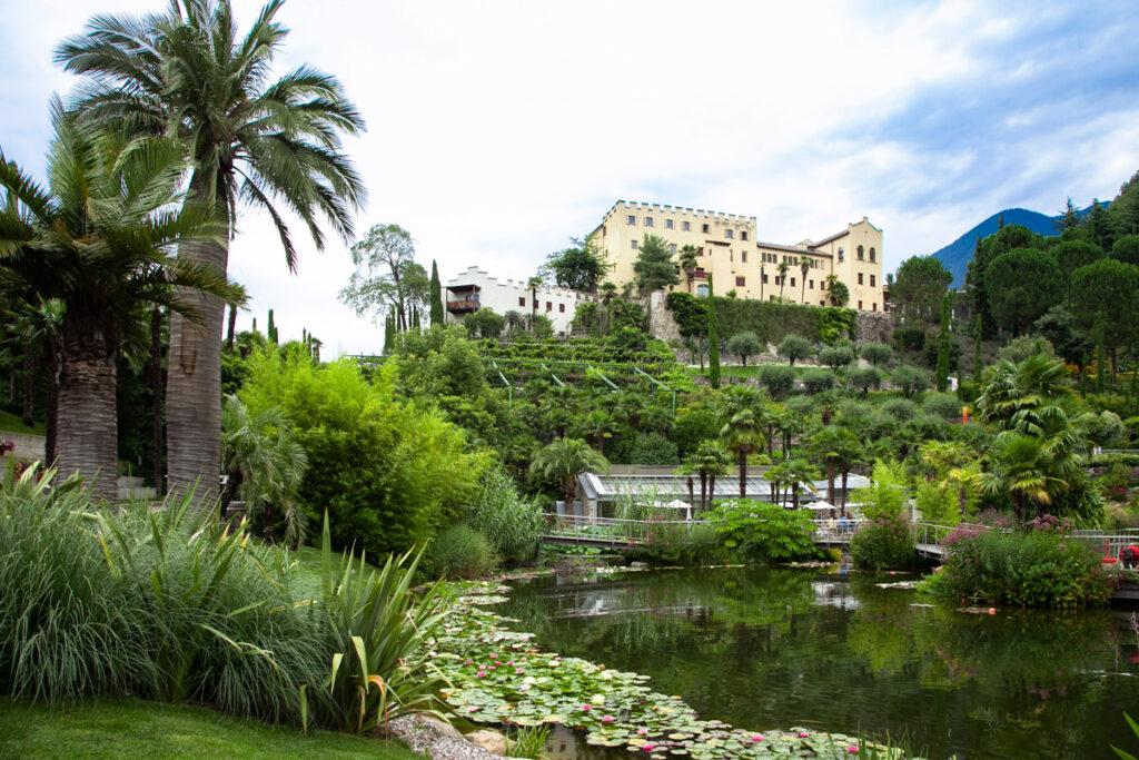 Giardini Acquatici e terrazzati e Palma da Miele del Cile