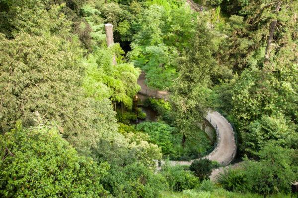 Gola della Gilf e il suo parco visto dall'alto