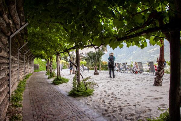 Spiaggia delle Palme oltre il porticato di viti