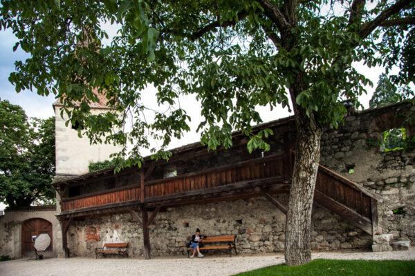Mura che racchiudono il giardino storico