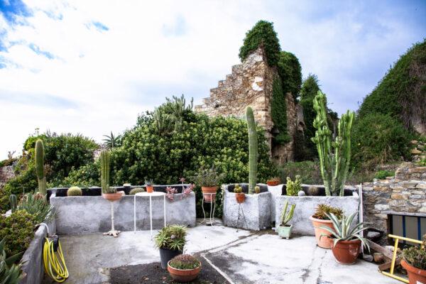Piante grasse nella terrazza panoramica del giardino tra i ruderi di Bussana Vecchia