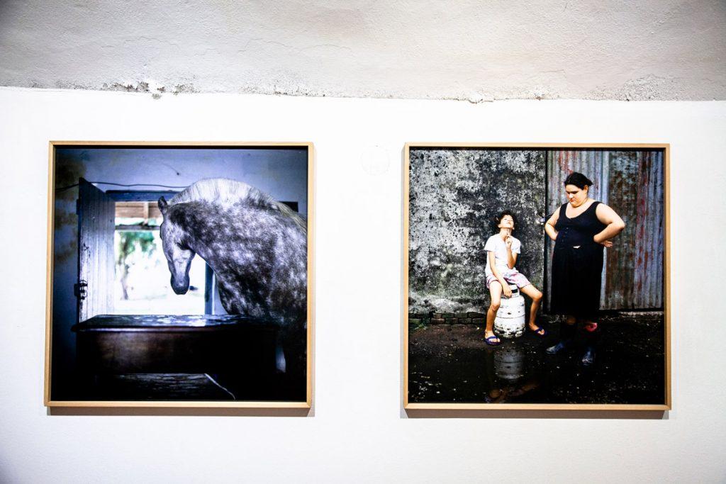 Ritratti nelle fattorie di Alessandra Sanguinetti